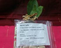 MusMus capsules
